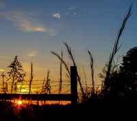 Sunset under the fence_